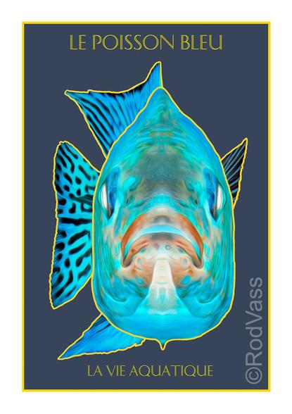 Le Poisson Bleu - By Rod Vass