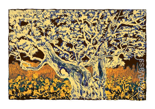 Split Oak in Russet - By Rod Vass