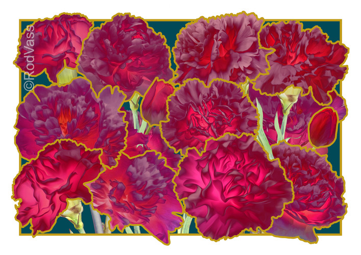 Carnations Deep Red - By Rod Vass