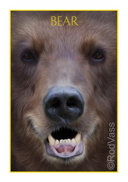 Bear - By Rod Vass