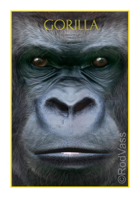 Gorilla - By Rod Vass