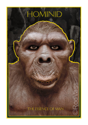 Hominid - By Rod Vass