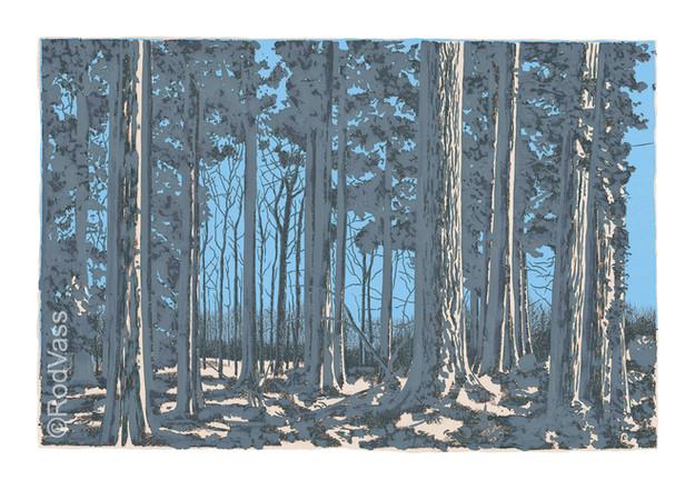 Blue Trees - By Rod Vass