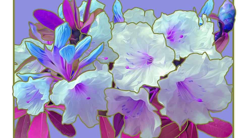Violet Rhododendron