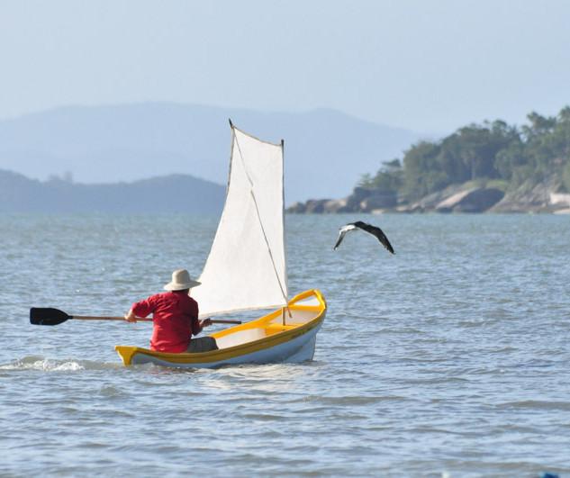 canoa de garapuvu indo atrás da gaivota