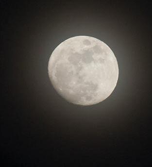 Mond_Dagmar_Steigenberger.jpg