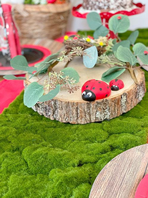 Ladybug Ball Picnic Tea Party
