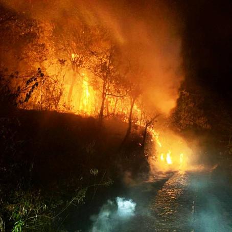 Bombeiros trabalham até o início da madrugada e controlam incêndio no Cristo