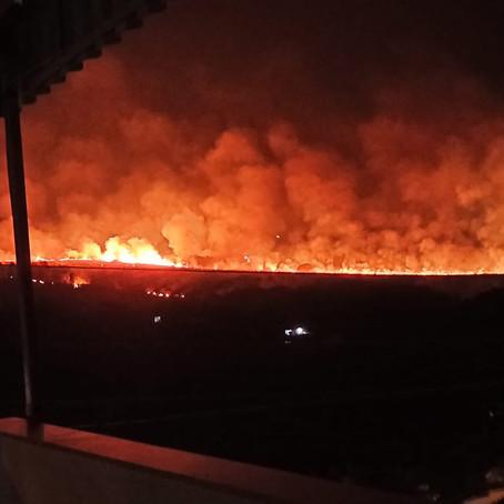Incêndio consome área de mata no Curralinho, em Pouso Alegre, e se aproxima de residências