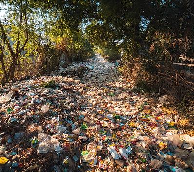 dirty-disposal-dump-2583836_edited_edite