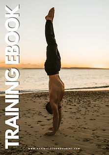 Copy of HANDSTAND WORKSHOP PDF-9.jpg