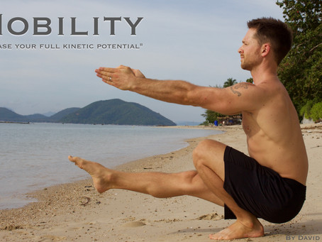 "Mobility for Martial arts - ""Unlock your full kinetic potential"""