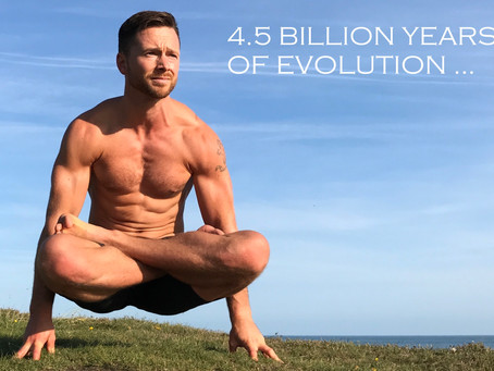 4.5+ BILLION YEARS OF EVOLUTION ...