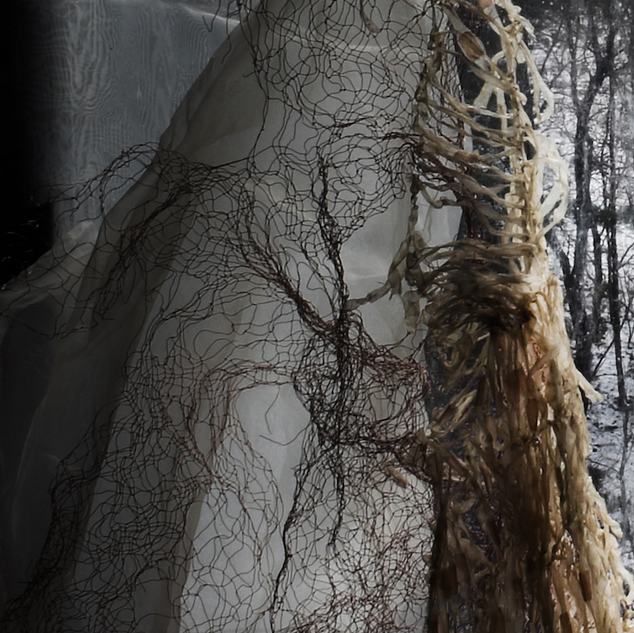 Winter internal/external (iterations of ghosts series 1 no. 15-detail)