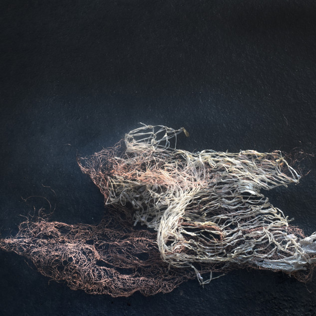 Your body in relation to ice (iterations of ghosts series 1 no. 22)