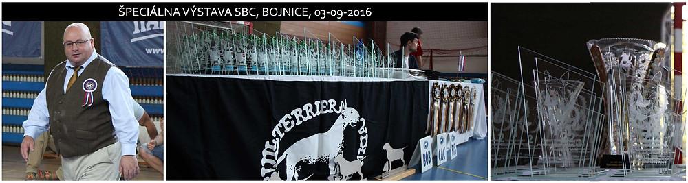 Klubová výstava SBC 2016