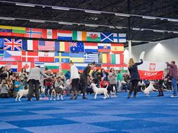 N.B.T.C. International Weekend, 20/21-11-2021, Holandsko