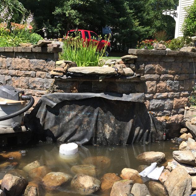 Pond Refresh