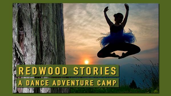 001_ RedwoodStories.jpg