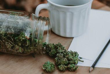 Riverside Cannabis Greenery, Auburn Me..