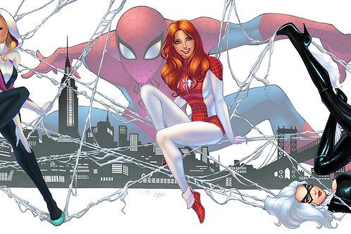 Spiderman: Ladies (SET)