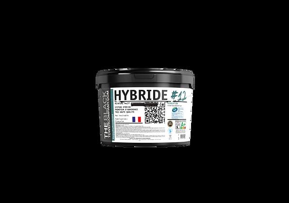 Hybride12DET.png