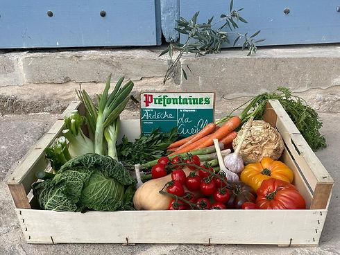 Panier de fruits et légumes et olivier.