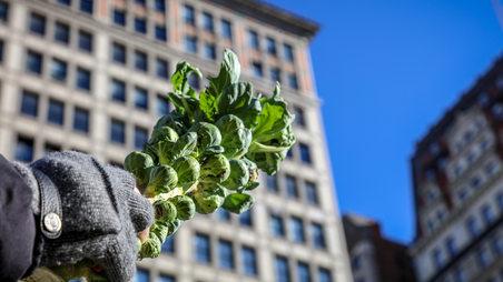 Yann Nury Nyc, New york city, vegetables