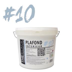 #10 - PLAFOND