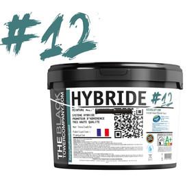 #12 - Hybride