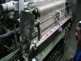 熊本県矢代市の畳イグサ生産地
