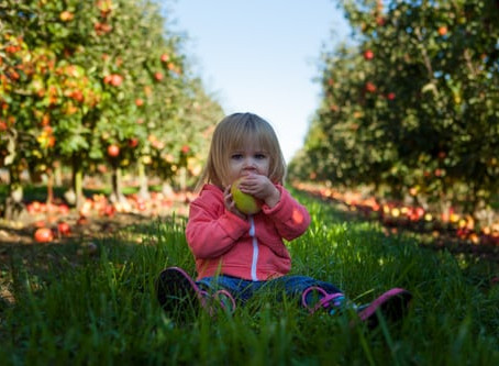 Live Well - Fresh Fruit, Healthy Skin