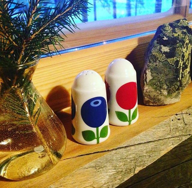 Salt and pepper log cabin Lapland