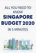 SG 2020 budget.PNG (new).PNG