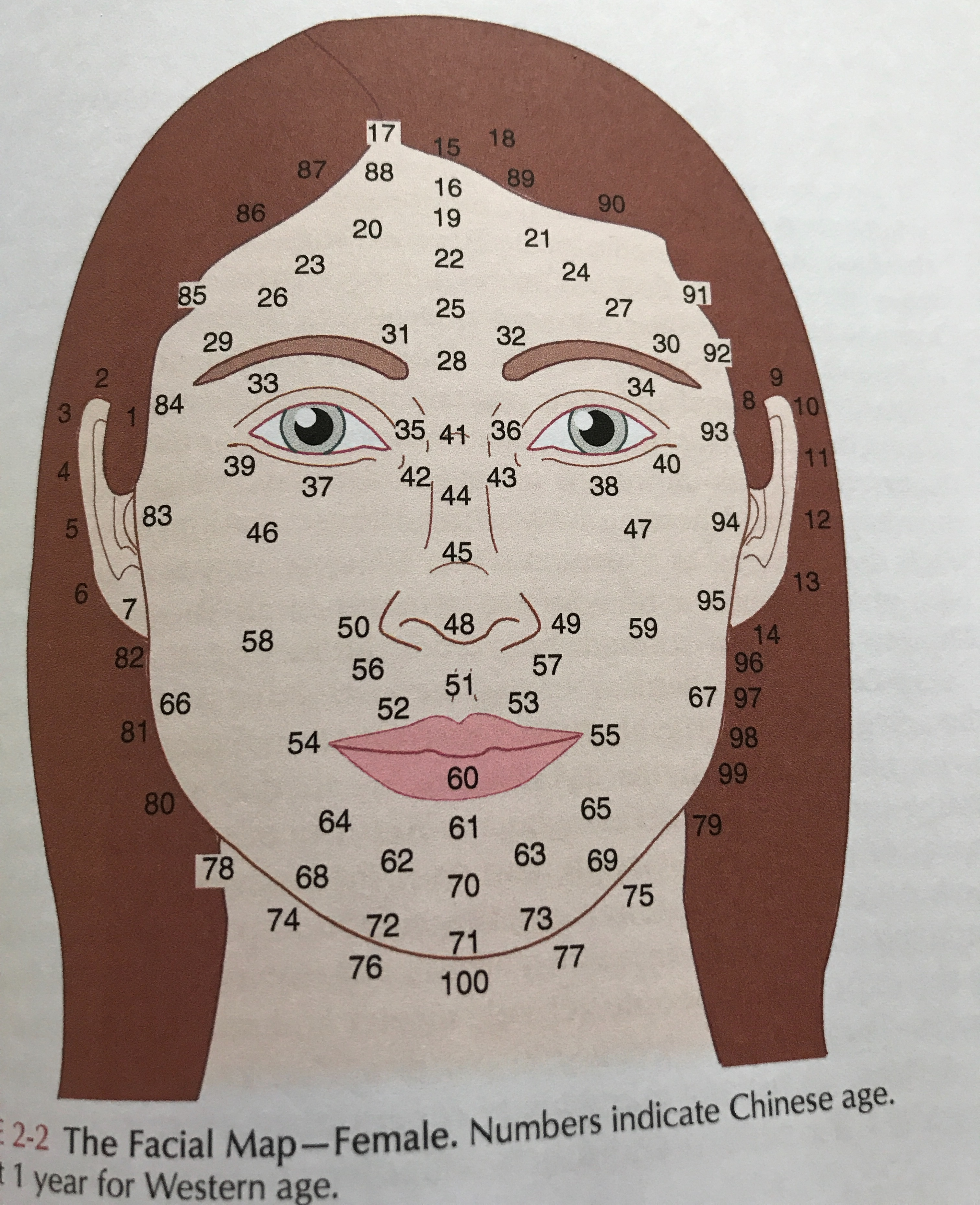 Face reading explained