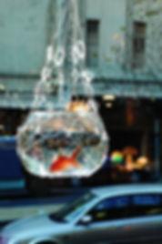 fish and city_edited.jpg