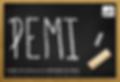 PEMI v16 copy.png