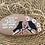 Thumbnail: Taş boyama kuşlar
