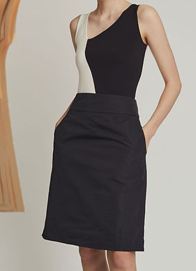 Radzimir A-Line Skirt
