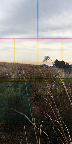 20190208_151307_HDR copy.jpg