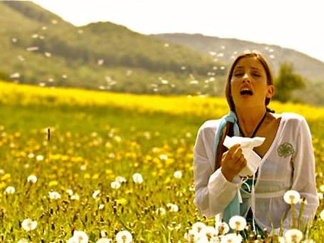 Les Allergies du printemps sont la!