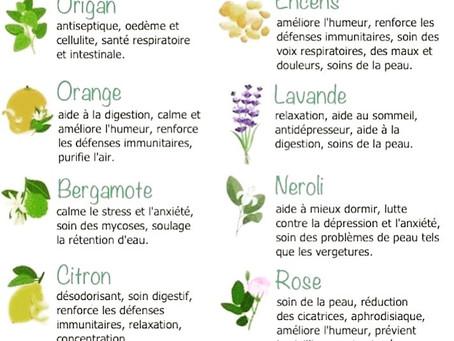 Les huiles essentielles du bien-être