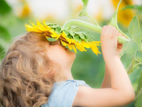 Les huiles essentielles chez les enfants