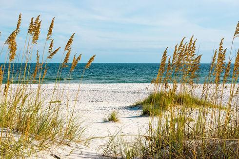 A scene on the Gulf Coast of Alabama..jp