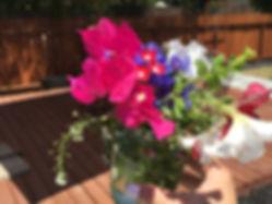 2015-07-04_205902014_E3287_iOS.jpg