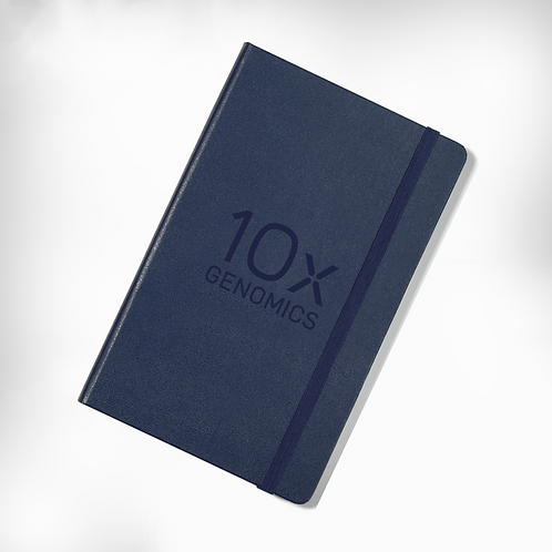 10x Moleskins