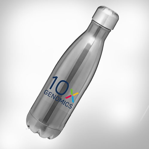 10x Stainless Steel Water Bottle
