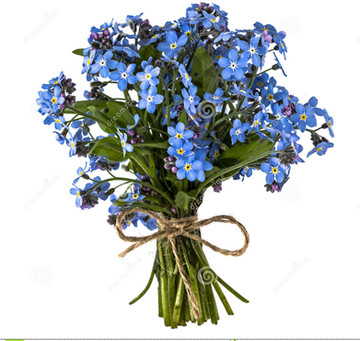 My Favourite Flowers for Bouquets