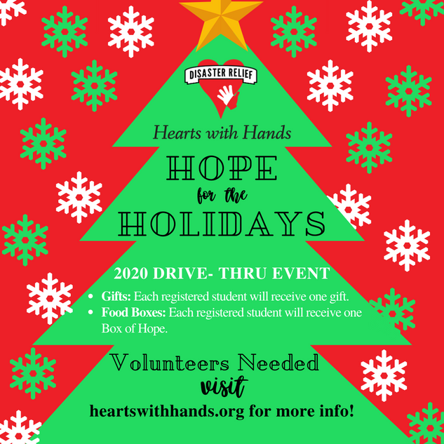 2020 Copy of Hope for Holidays square.pn