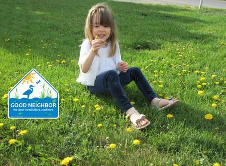 Child Care Centers are Reducing Pesticide Use